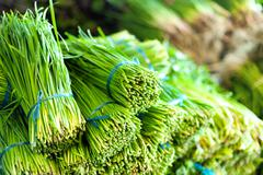 Green salad healthy food background. Vegetables on local asian market of orga Stock Photos
