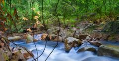 Silky smooth river water in tropical forest Stock Photos