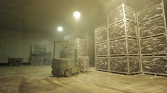 Forklift Transporting Containers With Frozen Tuna - stock footage
