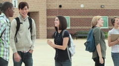 High school students talking together outside Stock Footage