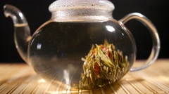 Florescence of Red Blooming Tea Stock Footage