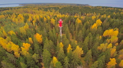 Tall pine trees surrounding the lighthouse Stock Footage
