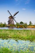 Stock Photo of Old watermill and water lily channels