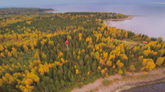 The aerial view of the forest in Juminda Stock Footage