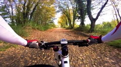 Stock Video Footage of Man on mountain bike in a forest. Autumn colors. Pov Original Point Of View