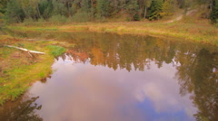 The river in the middle of the forest Stock Footage
