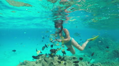 SLOW MOTION UNDERWATER: Woman snorkeling and feeding exotic reef fish Stock Footage