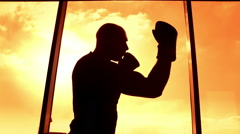 Boxer silhouette at sunset Stock Footage