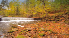 Big trees surrounding the small river in Nommeveski Stock Footage