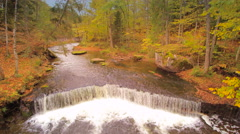 Aerial view of the forest with a river Stock Footage