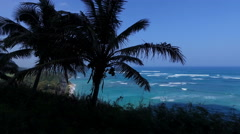 seascape with palm trees silhouette in Hawaii - slider shot - stock footage