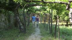 Couple walking through vineyard - stock footage