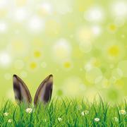 Easter Spring Hare Ears Grass Daisy Flowers - stock illustration