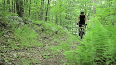 Male cyclist riding through forest Stock Footage