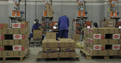 Team Of Workers Packaging Products In The Carton Boxes (4K) - stock footage
