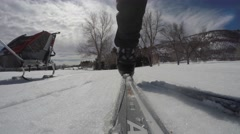 A family cross country skiing on sunny day Stock Footage