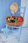 Basket of vegetables and herbs - stock photo