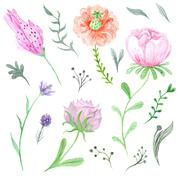 Set of Watercolor Spring Flowers and Leaves - stock illustration