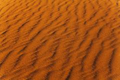 Sand wind wave pattern in the desert - stock photo