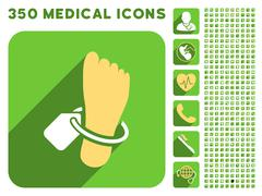 Mortuary Foot Tag Icon and Medical Longshadow Icon Set Stock Illustration