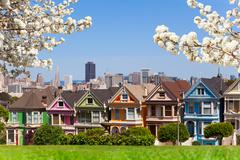 Spring photo of Painted ladies and San Francisco s Stock Photos