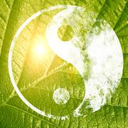 The yin and yang grass sign Stock Illustration