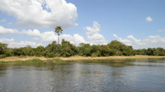 River Nile, Murchison Falls National Park, Uganda, Africa - stock footage