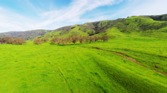 Colorful green open horse pasture with after rain small green grass 4k Aerial Stock Footage