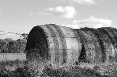 Large hay bales in countryside at Barossa Valley, South Australia. Black and  Stock Photos