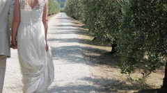 Bride and groom walking on rural road with suitcase, rear view Stock Footage