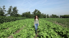 Young woman walking through field Stock Footage