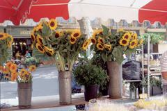 Flower Market, Place de l'Hotel, Aix-en-Provence - stock photo