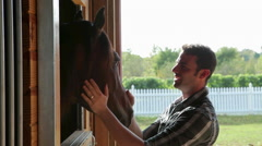 Man stroking horse's head in stable Stock Footage