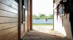 Woman opening stable door with horse inside Stock Footage
