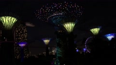 Supertree Grove light show Stock Footage