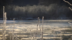 Stock Video Footage of Ice Encased River Shrubs and Icy River Rising Vapor Magic