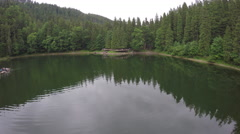 Synevir lake in Carpathians. Aerial view Stock Footage