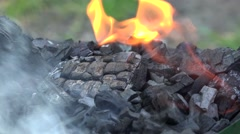 Fire flame burning the coal Stock Footage