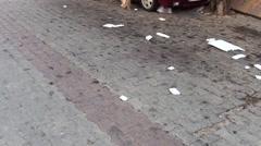 Reviewing litter distributed all around street Stock Footage