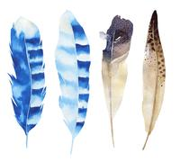 Hand drawn watercolor feather set. Boho style. illustration isol - stock illustration