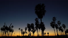 Palm trees silhouette at tropical sunset - Golden hour in Venice beach - stock footage