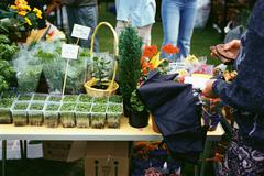 Flower stall at fete Stock Photos
