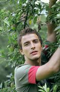 Young man under apple tree Stock Photos