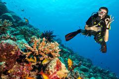 Scuba diver explore a coral reef showing ok sign Stock Photos