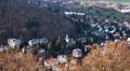 4k Bad Harzburg village buildings high angle panning Germany 4k or 4k+ Resolution