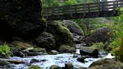 Looking down a stream under a bridge Stock Footage