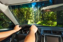 Hands of driving man inside the car in Redwood Stock Photos
