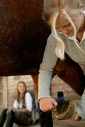 Young woman cleaning horse's hoof Stock Photos