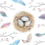 Hand drawn watercolor art bird nest with eggs ,easter design Stock Illustration