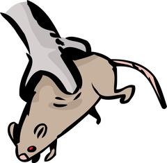 Helpless Rat in Bird Talons Stock Illustration